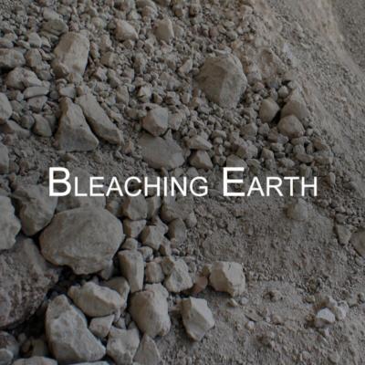 Business - Bleaching Earth